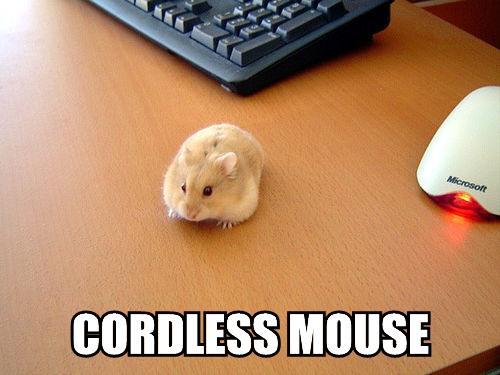 CordlessMouse